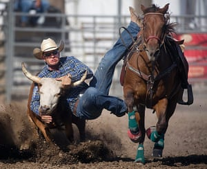 24 hours in pictures: Trey Huff attempts to gain control of a steer at the Colorado State Fair