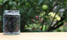 Blackberries in a jar