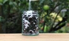 Adding sugar to blackberries