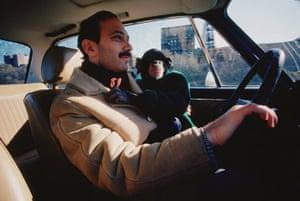 Project Nim: Prof Herbert Terrace drives Nim in the film documentary Project Nim