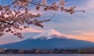 Mount Fuji and Kawaguchi Lake, with cherry blossom.