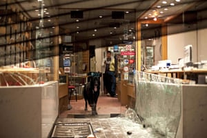 London riots: A dog keeps watch inside a shop damaged during unrest in Enfield