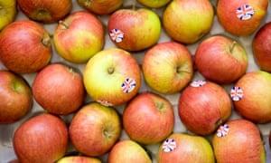 English Cox's apples