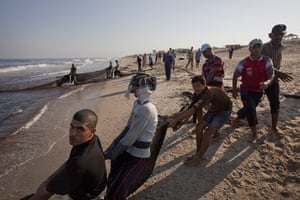 Palestinian Lives: Local Palestinian fishermen use nets to catch crabs and fish