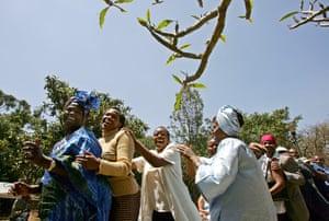 Wangari Maathai: Wangari Maathai dances during a press conference in Nairobi