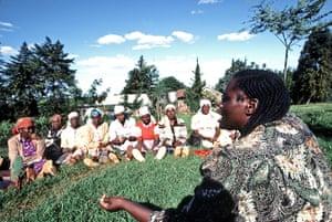 Wangari Maathai: founder of the Green Belt Movement