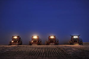 24 hours in pictures: Fort MacLeod, Canada: Combine harvesters harvest wheat