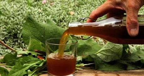 how to make dandelion liquor