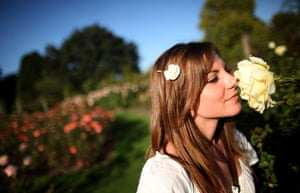 Hot Weather in the UK: A woman smells a rose in a garden in Regents Park