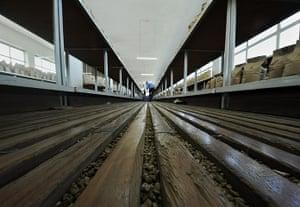 Coffee in Kenya: coffee beans between the floorboards of a sorting factory
