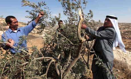 palestinians-israeli-occupation