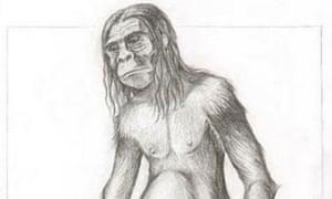 Artist's impression of an orang-pendek