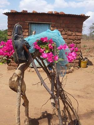 Flower arrangement, Kitui, eastern Kenya