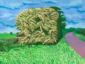 Hockney: Bigger Picture: The Big Hawthorn, 2008, by David Hockney