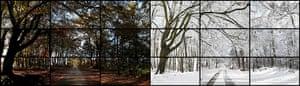 Hockney: Bigger Picture: Film still, Nov. 7th, Nov. 26th 2010, Woldgate Woods, 11.30 am and 9.30 am