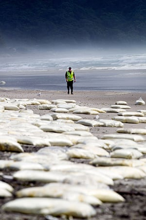 Rena breaks up: A security guard walks on a beach where milk powder was washed ashore