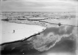 south pole expeditions: One of  Herbert Ponting's famous Antarctic images