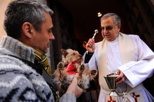 Saint Anthony day : Saint Anthony's day pet blessings