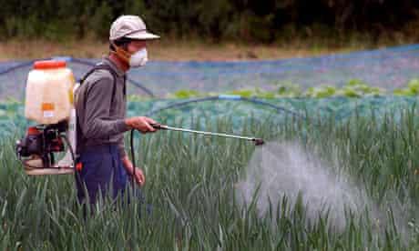 rice duck pesticides