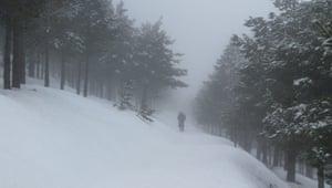 Ori Gersht: Soundand Snow by Ori Gersht