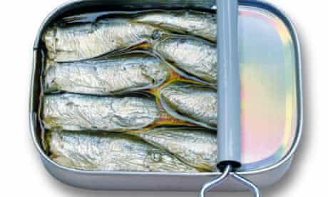 Oily fish are a source of vitamin D