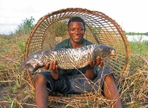 congo: Fish trap
