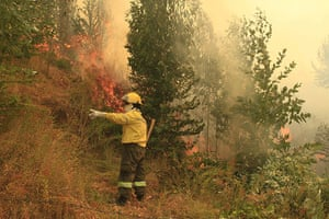 Forest fires in Chile: A firefighter battles against the fire affecting the commune of Quillon