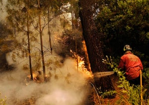 Forest fires in Chile: A firefighter works to put out a forest fire near Concepcion city