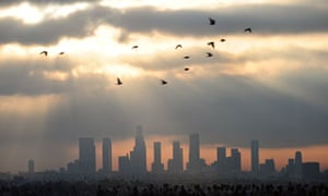 Birds fly across the sky at daybreak over the downtown Los Angeles skyline