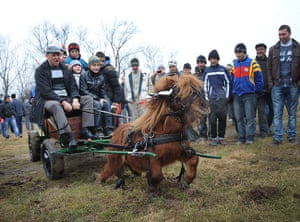 Epiphany: Romanians ride on a pony and cart during Epiphany in Pietrosani