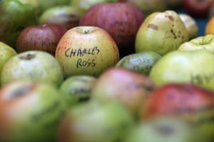 Harvest festival: A selection of some of the many varieties of British apples are displayed