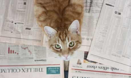 Jill Insley's cat Orlando chooses his winning stocks