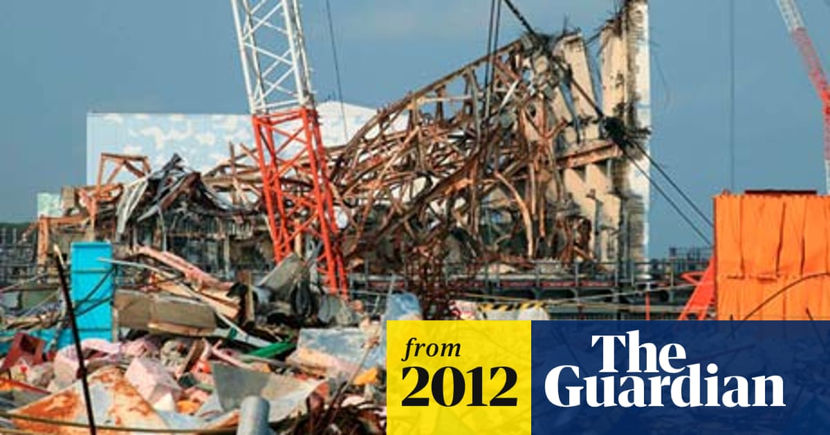 Fukushima disaster could have been avoided, nuclear plant ...