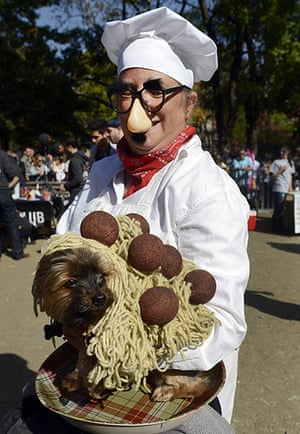 Dog parade: Consovoy and Baxter dressed as Spagetti and Meatballs