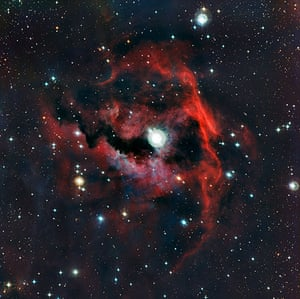 A month in Space: a stellar nursery nicknamed the Seagull Nebula