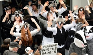 Activists from the League Against Cruel Sports stage a protest against proposed badger culls in Westminster, London.