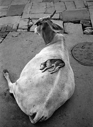 Pentti Sammallahti : Varanasi India, 1999 by Pentti Sammallahti