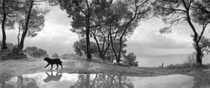 Pentti Sammallahti : Cilento Italy 1999 by Pentti Sammallahti