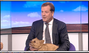 Charlie Elphicke MP with his dog Star