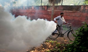 Fumigating Delhi: the mosquito-borne disease dengue is on the rise in the city, with more than 10 cases reported.