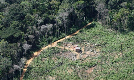 A patch of devastated forest is seen at the Bom Futuro (Good Future) National Forest Reservation