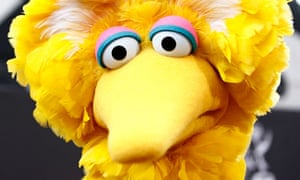 Big Bird snl