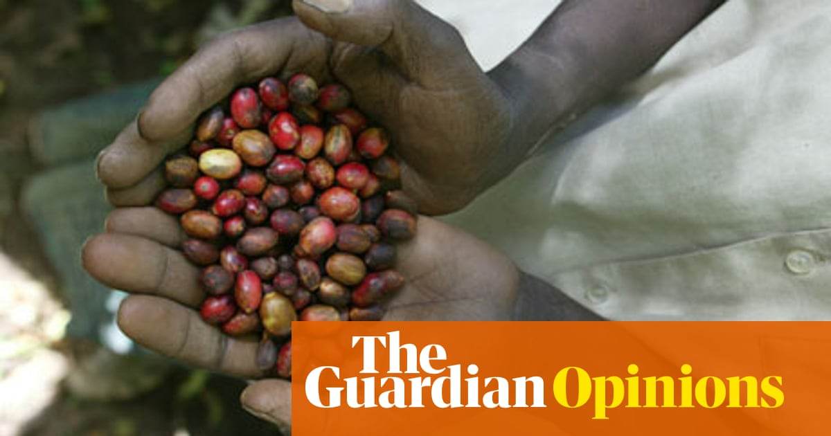 Coffee is not dead – but it is losing its wild side   Oliver