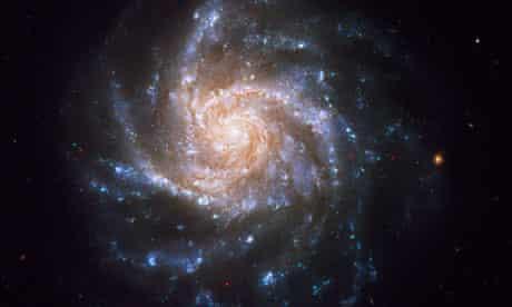 Spiral galaxy NGC 1376.