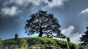 Hobbit gallery: Hobbiton 2