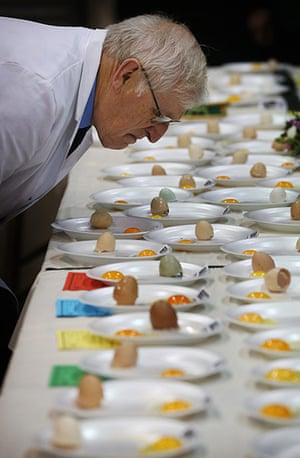 Poultry Show: Judge Malcolm Thompson inspects eggs