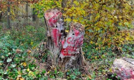 The vandalised 'totem' stump.
