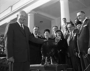 Turkey pardoning: President Eisenhower with turkey