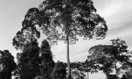 Duchess of Cambridge photos from Borneo