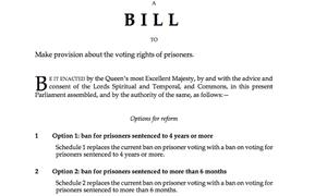 Prisoner voting bill